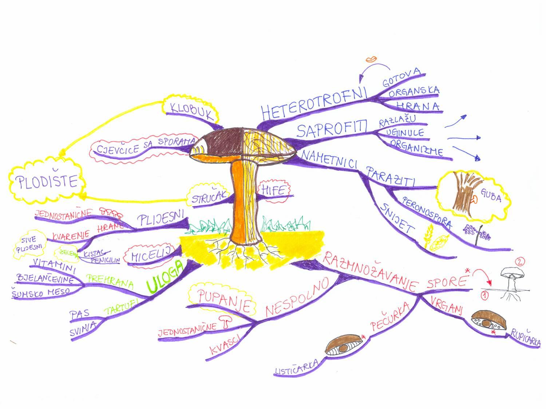 Mentalne mape