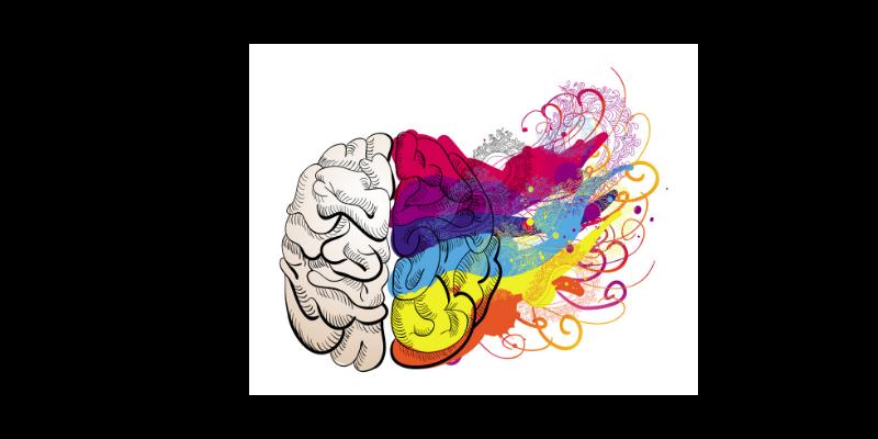 Mozak - mentalnemape.eu